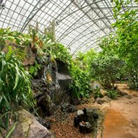 Inside Garfield Park Conservatory, Chicago, IL