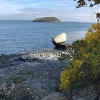 Blog | Lifeworks Psychotherapy