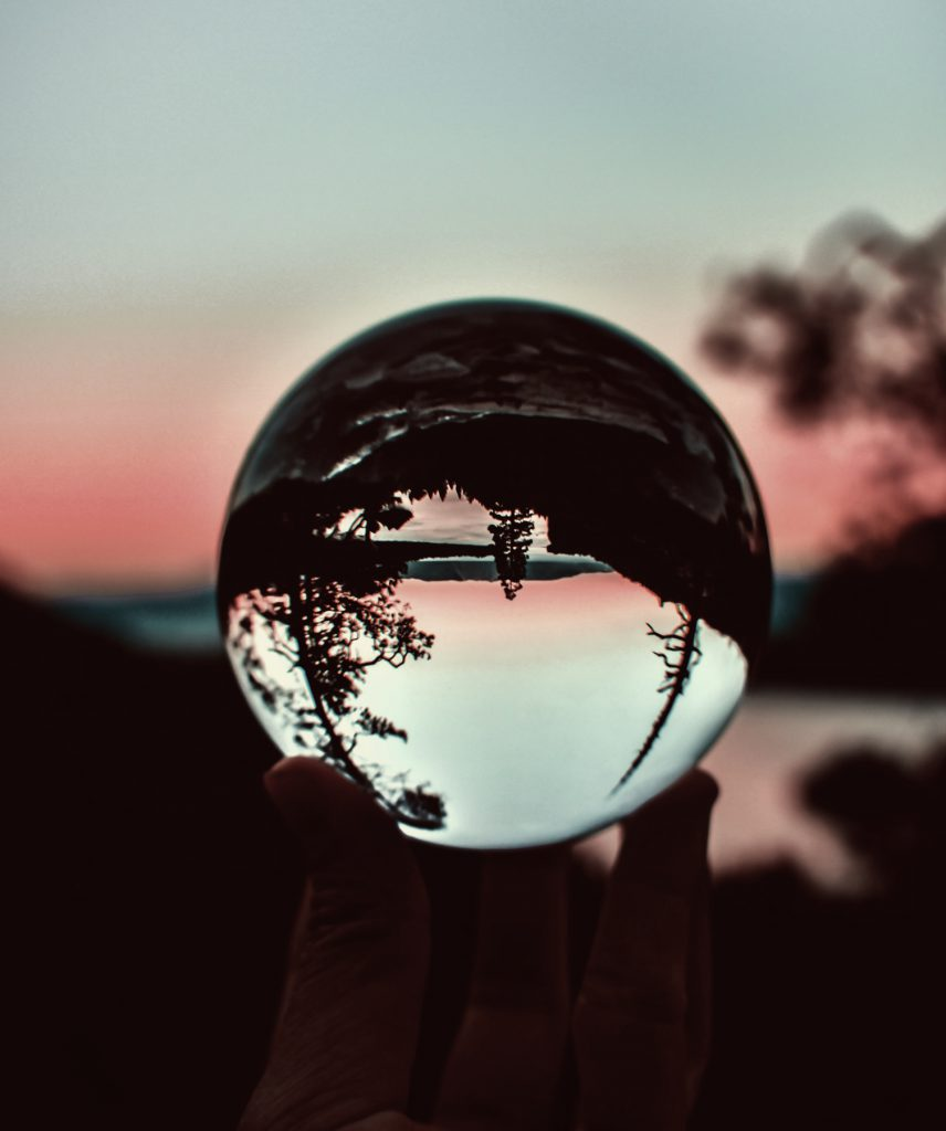 A forest reflected in a clear sphere