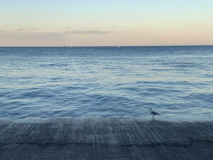 meditative ocean view